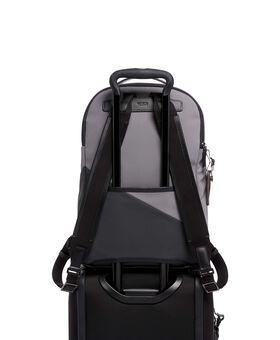 Webster Backpack Spring Ltd Mens